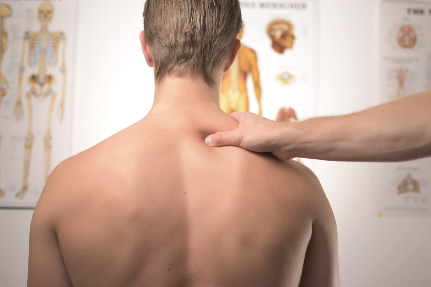 Physical therapy in Everett